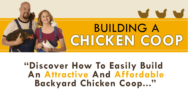 Cheap Chicken Coop Plan Guide
