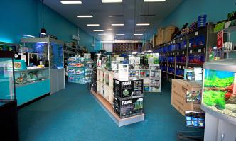 Aquarium Shop Near Me
