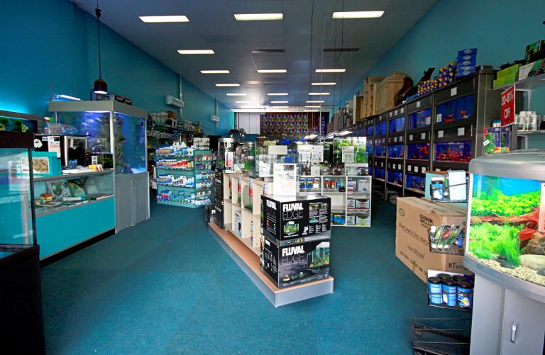 Aquarium Shop Near Me The Best Pet Fish Store Near You Open Now