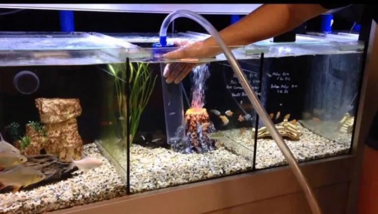 The 14 Best Aquarium Gravel Vacuum Cleaners Reviews