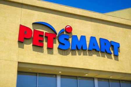 PetSmart near me: How much is grooming at petsmart ...