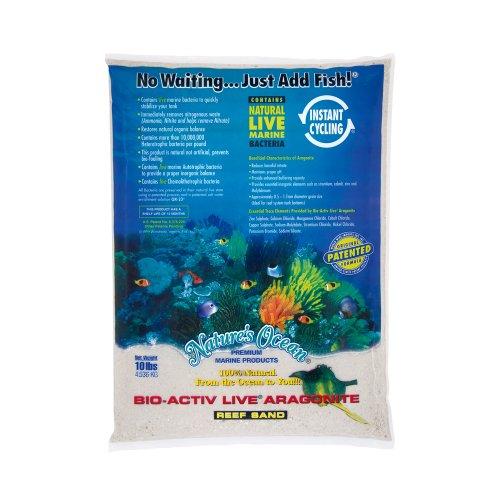 Best Aquarium Sand Review 2020: What To Consider When Buying Aquarium Sand?