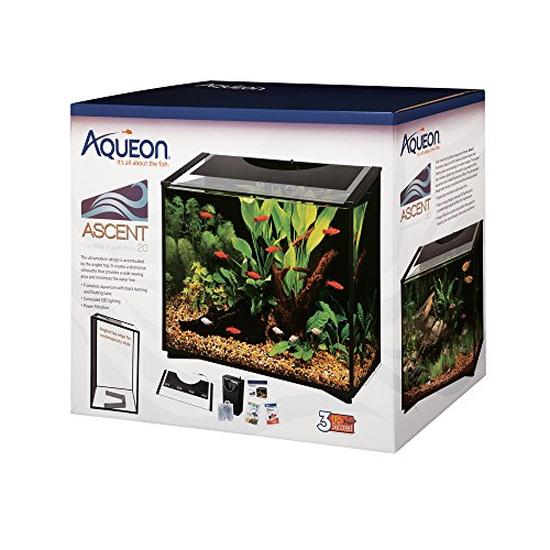 The 11 Best Aquarium Starter Kits Reviews & Guide 2020