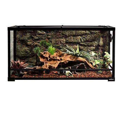 Best Bearded Dragon Enclosure Review: What to consider when choosing a bearded dragon enclosure?