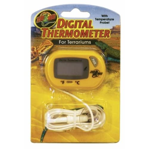 Best Bearded Dragons Thermometers: What Features Should A Good Bearded Dragon Thermometer Have?
