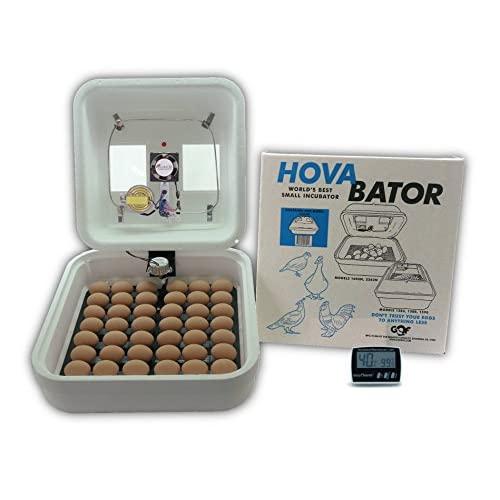 Best Chicken Egg Incubator Reviews 2020