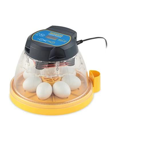 Best Chicken Egg Incubator for Sale 2020