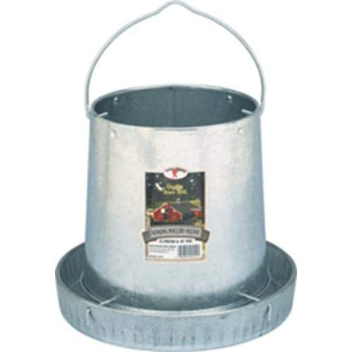The 6 Best Chicken Feeders (2020 Reviews)