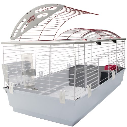 Best Chinchilla Cage Setup 2020: What's Indispensable In The Chinchilla Cage?