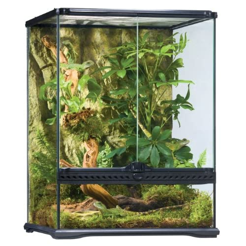Best Crested Gecko Cage 2020: How big of a cage ?