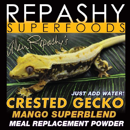 Best Crested Gecko Food: What Do Crested Geckos Need To Eat?