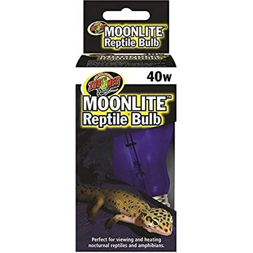 Best Crested Gecko Lighting 2020: Lighting at Night, Schedule and Heating