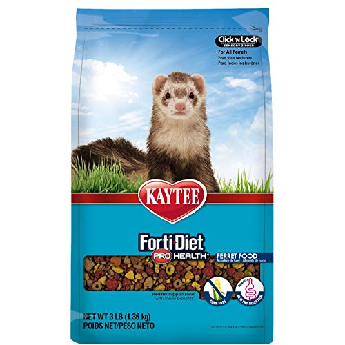 Best Diet For Ferrets Review 2020: How To Provide The Best Diet For Ferrets?