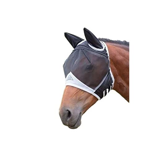 Best Fly Mask For Horses 2020: Do Horses Like To Wear Fly Masks?