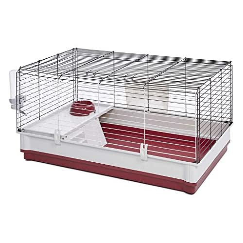 Best Hedgehog Cage 2020: What To Look For When Buying A Hedgehog Cage?