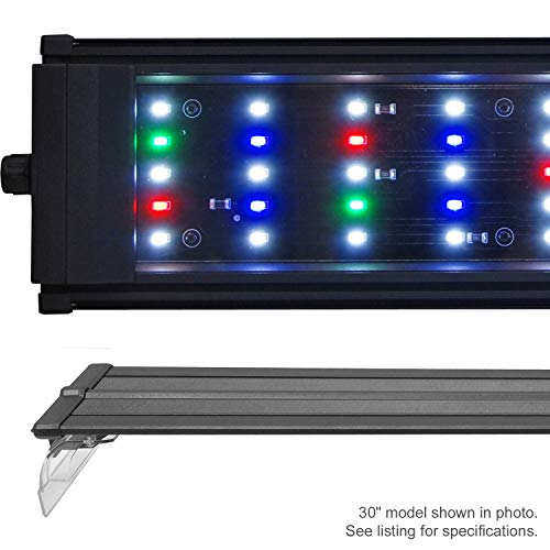 Best LED Aquarium Lighting For Plants & Here's Why You Need It For Aquarium