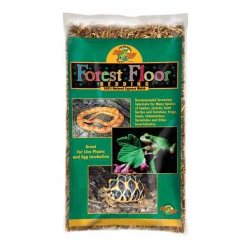 Best Loose Substrate For Bearded Dragons 2020: Is It Good or Bad?
