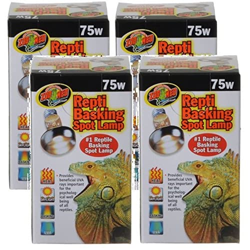 Best Reptile Basking Bulb: What Is The Right Time To Use Basking Bulb?