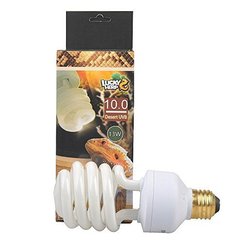 The 17 Best Reptile UVB Light Bulbs Reviews 2020