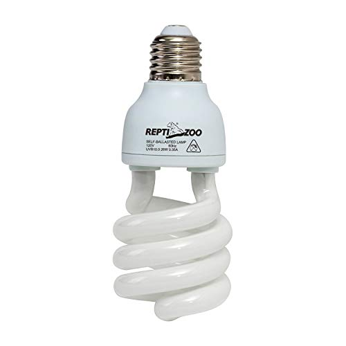 The 10 Best UVB Bulb For Tortoise Review 2020
