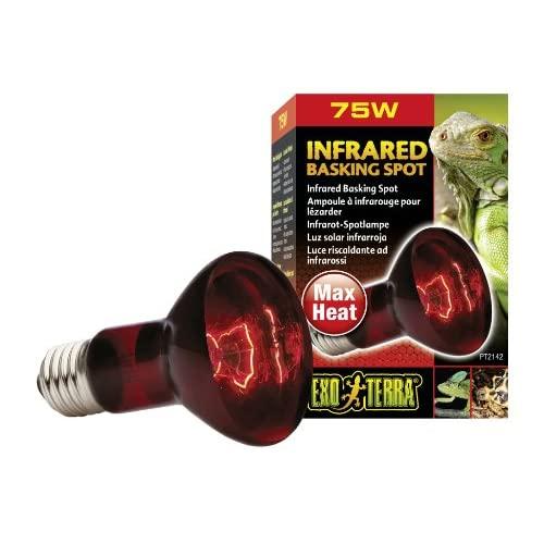 Best UVB Light For Iguanas Rview 2020: What Does UVB Light Do For My Iguanas?