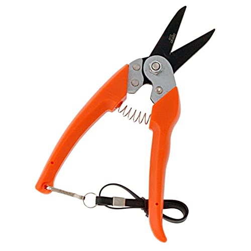 The 6 Best Hoof Trimmers for Sheep - Goat Hoof Trimmers (2020 Reviews)
